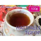 紅茶 茶葉 アッサム:スリシバリ茶園 オータムフラッシュ TGFOP1 O501/2014 100g【送料無料】