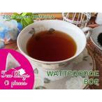 紅茶 ティーバッグ 10個 ディンブラ ワッテゴーデ茶園 BOP/2021 茶葉 リーフ 送料無料
