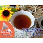 紅茶 ティーバッグ 40個 ボガワンタラワ:キュー茶園 BOPF/2016 茶葉 リーフ 送料無料