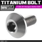 64チタンボルト M6×15mm P1.0 頭部径14mm テーパーヘッド 六角穴 ボタンボルト シルバーカラー 素地 1個 JA616