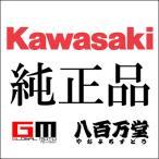 【カワサキ純正】 トップケース取付ベースプレート 1400GTR '15【J999940620】【KAWASAKI】