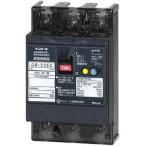 テンパール工業 GB-33EC 20A 30MA 漏電遮断器 Eシリーズ (経済タイプ) OC付 テンパール工業  33EC2030 (GB33EC 20A )
