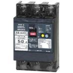 テンパール工業 GB-53EC 50A 30MA  漏電遮断器 Eシリーズ (経済タイプ) OC付  53EC5030 『GB53EC50A』