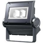 岩崎電気 ECF0396N/SAN8/DG (ECF0396NSAN8DG) LED投光器 レディオックフラッドネオ 30クラス(旧40W) 広角 昼白色 ダークグレイ