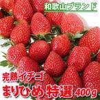 完熟イチゴ まりひめ 特選 400g いちご 苺 フルーツ スイーツ