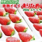 お徳用 完熟イチゴ まりひめ 350gx2パック いちご 苺 フルーツ スイーツ