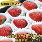 完熟イチゴ まりひめ 特選 大粒デラックス いちご 苺 フルーツ スイーツ