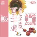 写真素材集 高品位平面アタリ画像集Vol.005 キリヌキ画像百三十選