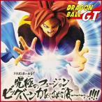 ドラゴンボール ゴジータ スーパーサイヤ人4 フィギュア ドラゴンボールGT 究極のフュージョン ビッグバンかめはめ波ーーーっ!!!! 超サイヤ人4ゴジータ