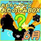 おたのしみBOX (おもちゃVol.6) 6月BOX 何が届くかはお楽しみ おもちゃ・グッズ福袋 数量限定 お楽しみボックス