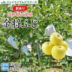 【JAてんどう共選品】 訳あり 山形県産 りんご『金将ふじ』約5kg(玉数おまかせ)