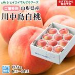 桃 川中島白桃 約3kg(8〜14玉)秀品 山形県産 もも ギフトf13
