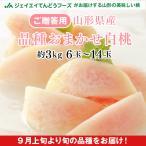 贈答用  桃 白桃 (品種おまかせ) 約3kg (6玉〜14玉) 山形県産 もも ギフト ※9月上旬から出荷予定 pc13