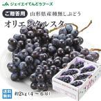 ぶどう ギフト 希少品種 『オリエンタルスター』 約2kg(4〜6房) 山形県産 秀品 葡萄 贈答 h06