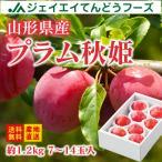 【予約商品】すもも ギフト プラム 『秋姫』 約1.2kg (6〜10玉) 秀品 山形県産 スモモ pl04