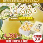 りんご あすつく 特秀品 山形県産 はるか 約2kg (玉数おまかせ)  糖度15度以上 リンゴ 林檎  (一部地域別途送料) ap37