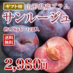 【予約商品】 すもも ギフト プラム 『サンルージュ』 約1.2kg (玉数おまかせ) 秀品 希少品種 山形県産 スモモ pl05