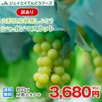 ぶどう 訳あり 皮ごと 『シャインマスカット』 約2kg 山形県産 ご自宅用 葡萄 h07