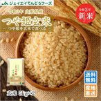 玄米 10kg (5kg×2袋) つや姫 山形県産 令和元年産 rtg10