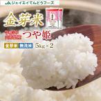 米 つや姫 お試し 金芽米 10kg (5kg×2袋) つや姫 山形県産 令和元年産 rtk1001