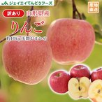りんご 訳あり 品種おまかせ  約10kg リンゴ ご自宅用 山形県産 林檎 山形 (一部地域別途送料) ※11月中旬頃から順次発送ap13