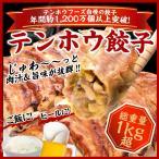 ショッピング餃子 餃子 テンホウ餃子 総重量1kg超