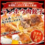 ショッピング餃子 肉餃子  総重量1kg超