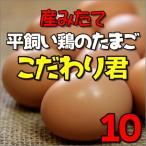 鶏卵 卵 平飼い たまご 平飼い卵 産みたて卵 兵庫県産 10個入り
