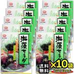 前島食品 海藻サラダ 10g入り ×10袋セット わかめ ワカメ 昆布 海藻 乾物 乾燥