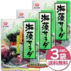 前島食品 海藻サラダ 10g入り 3袋セット わかめ ワカメ 昆布 海藻 乾物 乾燥