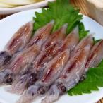 イカ ホタルイカ 生食用 刺身 冷凍 (21匹x2パック)×2  山陰 日本海産 兵庫県