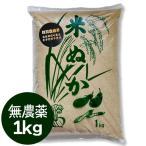 数量限定 丹波 米ぬか 無農薬 1kg 販売 コシヒカリ 糠 米糠