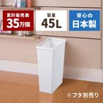 ゴミ箱 ごみ箱 イーラボ スマートペール 45L本体『4月限定!20%OFFクーポン配布中』 分別 ダストボックス