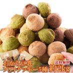 【ダイエット食品】新感覚満腹おから豆乳ソフトクッキーたっぷり2kg 常温商品 ヘルシークッキー