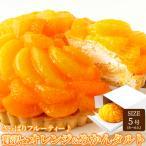 贅沢オレンジ&みかんタルト 5号サイズ フルーティー フルーツタルト ケーキ 冷凍商品