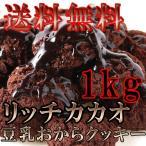 豆乳おからクッキー リッチカカオ 1kg チョコ クッキー 常温商品