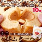 【送料無料(ゆうパケット)】ふわっとやわらか!! ミニバウムクーヘン 10個 国産 日本製 個包装 お菓子 小分け 1000円ポッキリ ポイント消化