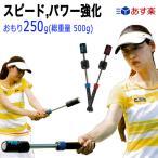 テニス素振り専用トレーニング器具 パワーストローク(パワーアップ・ダブルハンド用)おもり250g/総重量700g[硬式テニス用] (TPS-N56R/TPS-N56B)