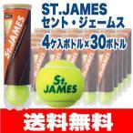 硬式テニスボール ダンロップ セントジェームス St.JAMES  4球×30缶 120球 練習球