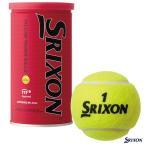スリクソン(SRIXON) テニスボール SRIXON(スリクソン)2球入 1缶 SRXDYL2DOZ