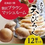 餃子 お取り寄せ 冷凍 北海道 とかちマッシュぎょうざ 12個セット ギョウザ ギフト