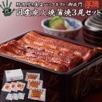 父の日ギフト プレゼント うなぎ 鰻 国産 蒲焼 御成門(おなりもん) 300g(100g×3尾) ての字 手焼き