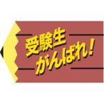 SLラベル 受験生がんばれ!/500枚×10冊入/業務用/新品