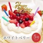 誕生日ケーキ バースデーケーキ いちご 生クリーム ショートケーキ フルーツ 子供 女性 宅配 翌日着 ホワイトベリー5号 Ver.2 4〜6人用