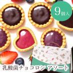 プチギフト お菓子 退職 引越 個包装 お礼 / 乳酸菌チョコロン アソート9個入