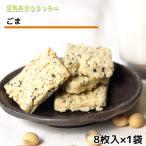おからクッキー ゴマ味(8枚入) 牛乳 バター マーガリン 卵 不使用 / 保存料 香料 無添加 ポイント 消費 消化 お試し ギフト 低糖質 低カロリー スイーツ