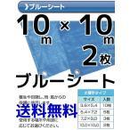 ブルーシート 軽量 薄手タイプ 大型 10m×10m 2枚入 送料無料(本州/四国/九州)「同梱/キャンセル/変更/返品不可」