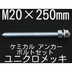 ケミカル アンカーボルト セット ユニクロメッキ M20×250mm 寸切ボルト1本 ナット2個 ワッシャー1個 Vカット 両面カット「取寄せ品」