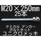 ケミカル アンカーボルト セット ユニクロメッキ M20×250mm 25本 寸切ボルト1本 ナット2個 ワッシャー1個 Vカット 両面カット「取寄せ品」