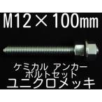 ケミカル アンカーボルト セット ユニクロメッキ M12×100mm 寸切ボルト1本 ナット2個 ワッシャー1個 Vカット 両面カット「取寄せ品」